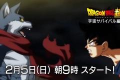 Dragon Ball Super - Universe Survival Saga - Preview #2 【HD】.mp4_snapshot_00.12_[2017.01.22_04.31.07]