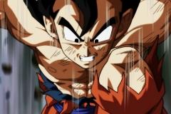 Dragon Ball Super Épisode 131 (16)
