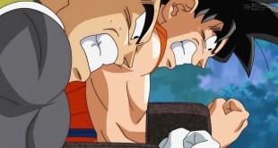 Dragon Ball Super Épisode 18 : Résumé