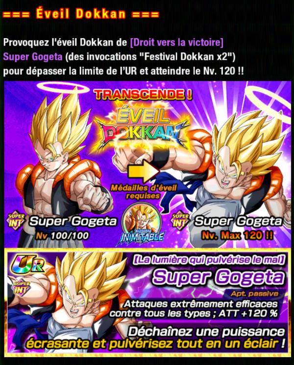 Dragon Ball Z Dokkan Battle : Fusion Inimitable | Dragon