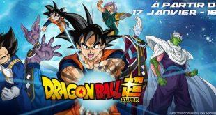 Sondage sur le doublage FR de Dragon Ball Super