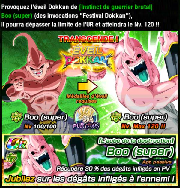 Dragon Ball Z Dokkan Battle : Pur Chaos
