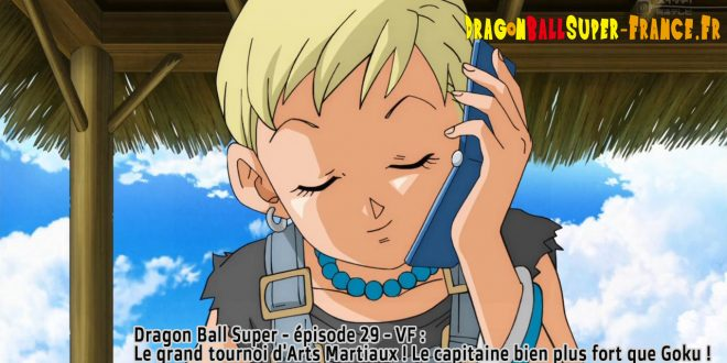 Dragon Ball Super Épisode 29 : Diffusion française