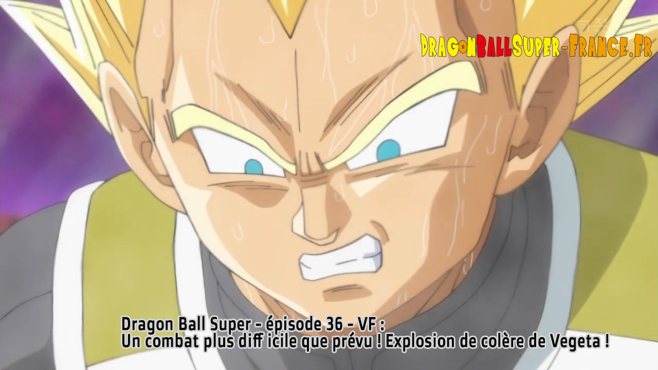 Dragon Ball Super Épisode 36 : Diffusion française
