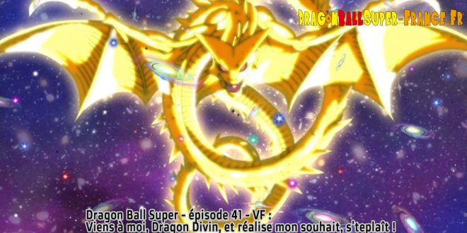 Dragon Ball Super Épisode 41 : Diffusion française