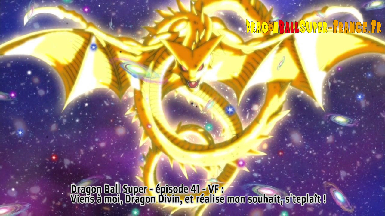 Dragon Ball Super Épisode 41 : Diffusion française