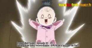 Dragon Ball Super Épisode 43 : Diffusion française