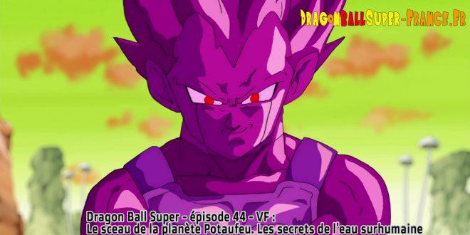 Dragon Ball Super Épisode 44 : Diffusion française