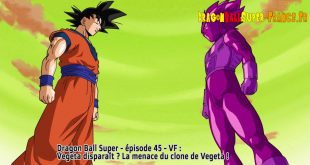 Dragon Ball Super Épisode 45 : Diffusion française