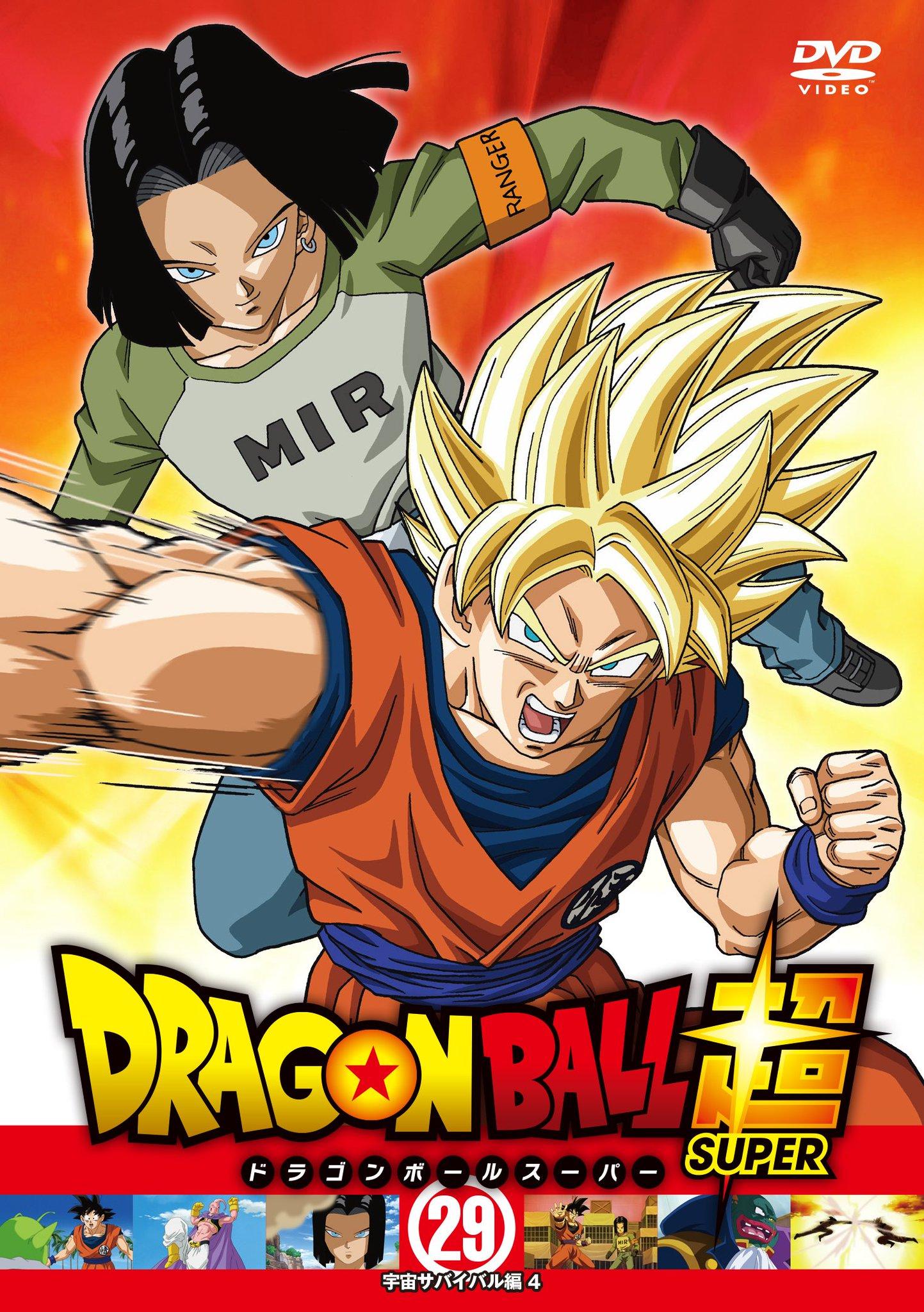 Dragon Ball Super DVD 29