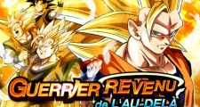 Dragon Ball Z Dokkan Battle : Guerrier Revenu de l'Au-Delà