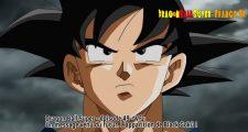 Dragon Ball Super Épisode 49 : Diffusion française