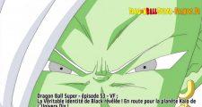 Dragon Ball Super Épisode 53 : Diffusion française