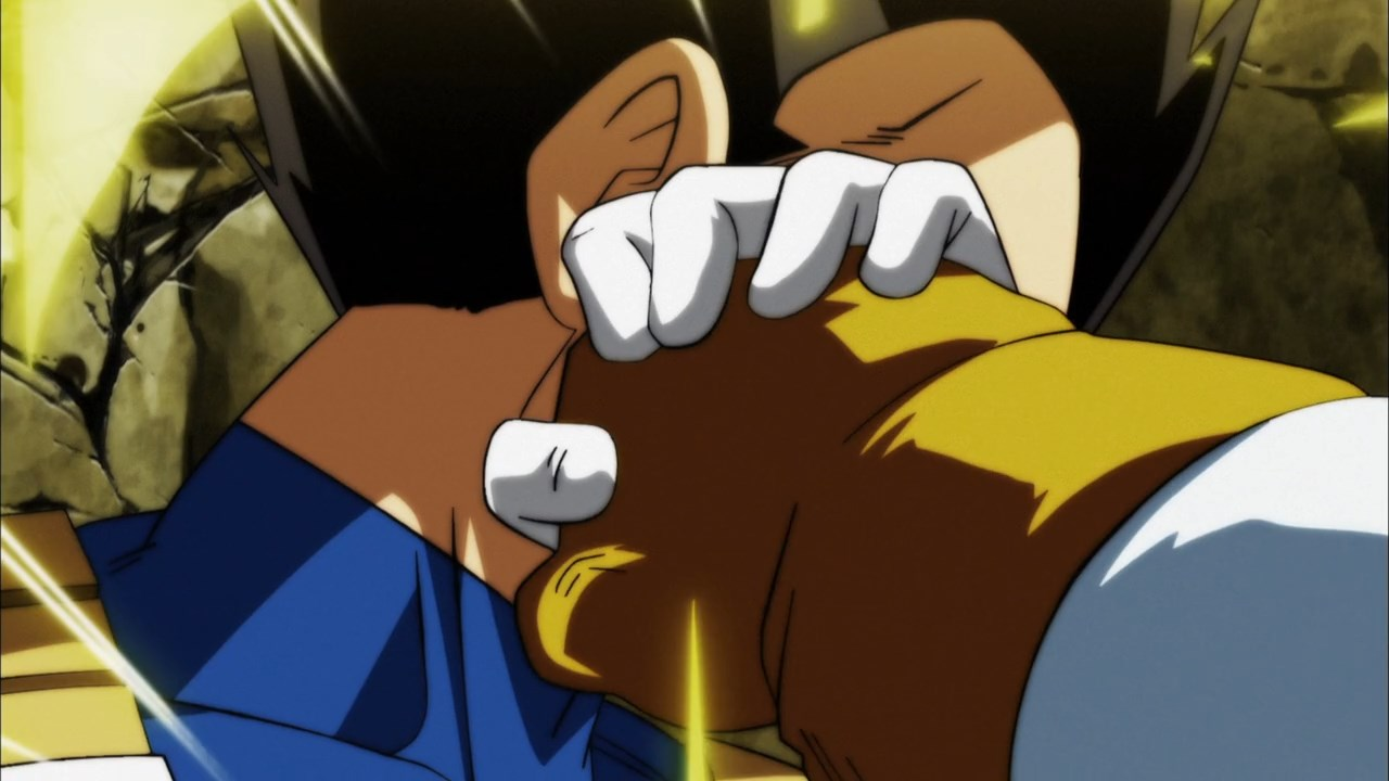 Dragon Ball Super Épisode 117 : Diffusion française