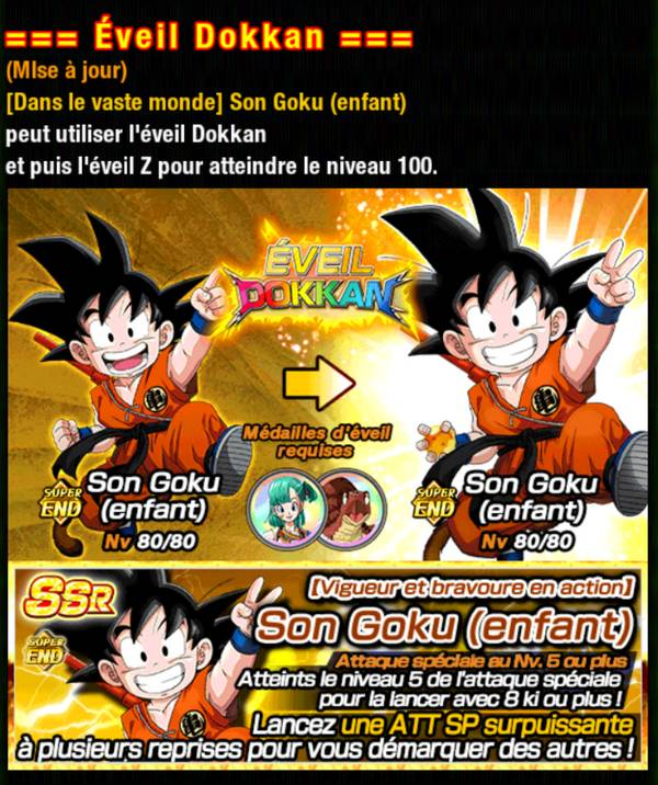 Dragon Ball Z Dokkan Battle : Aventure, Gratitude et Espoir
