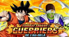 Dragon Ball Z Dokkan Battle : Combat Ardent - Guerriers de l'Au-Delà