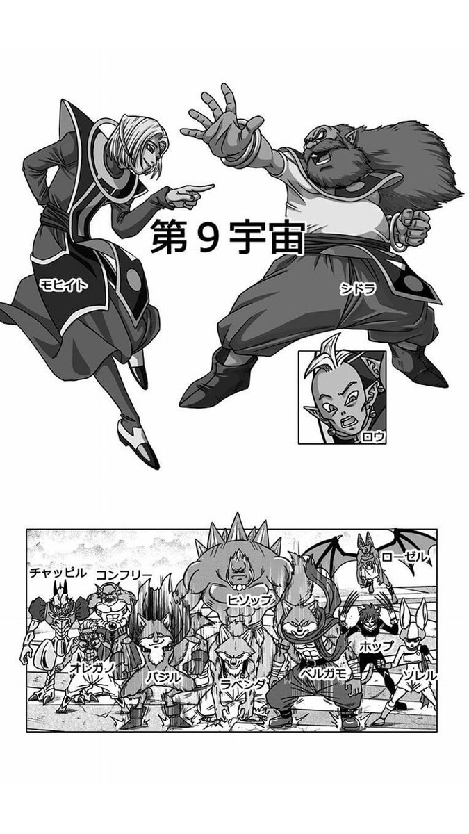 Dragon Ball Super Univers 9
