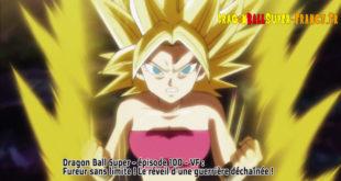 Dragon Ball Super Épisode 100 : Diffusion française