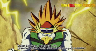Dragon Ball Super Épisode 105 : Diffusion française