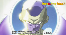 Dragon Ball Super Épisode 95 : Diffusion française