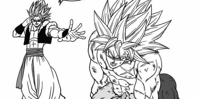 Dragon Ball Super Tome 9 : Illustrations bonus, nouvelles cases et correction