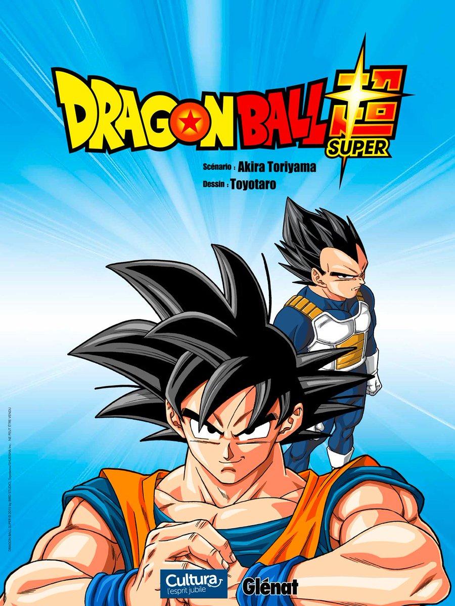 Poster Goku et Vegeta