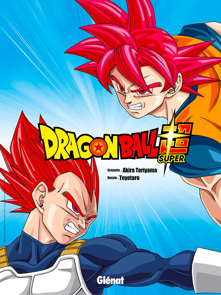 Poster dragon ball super Goku et Vegeta Super Saiyan God