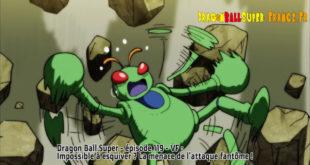 Dragon Ball Super Épisode 119 : Diffusion française