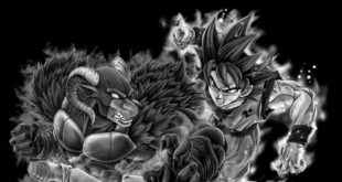 Dragon Ball Super tome 13 : Les illustrations bonus de Toyotaro