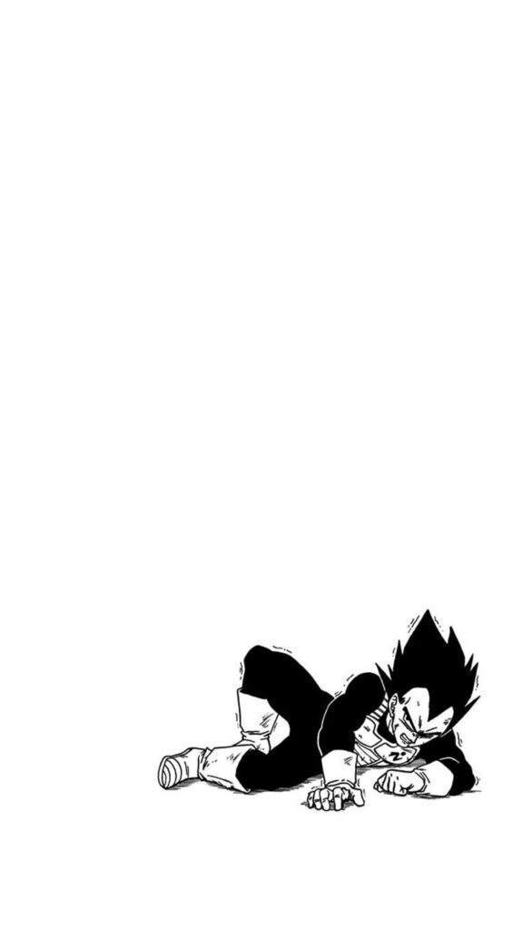 Dragon Ball Super Tome 14 bonus