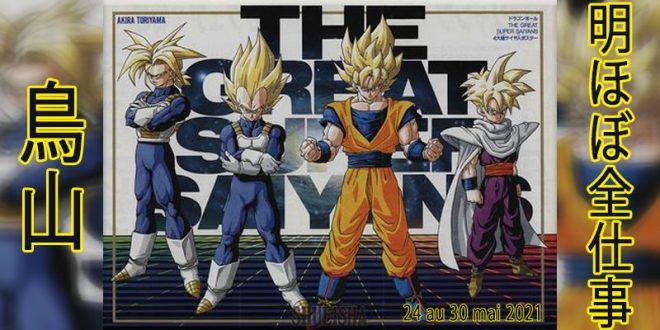 Presque toutes les œuvres d'Akira Toriyama – Semaine du 24 au 30 mai 2021